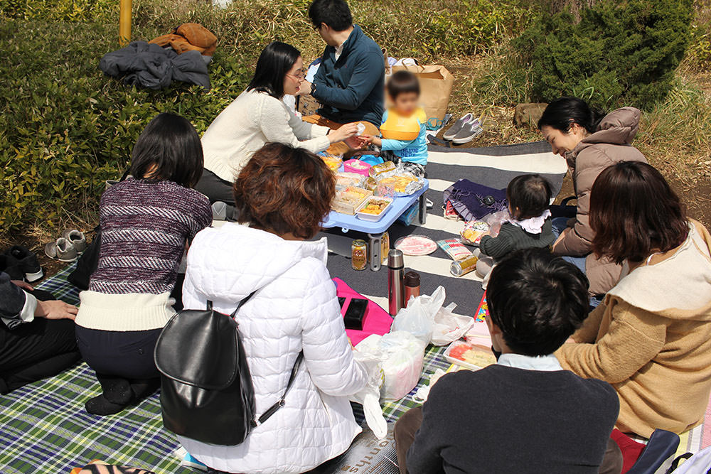 Place picnic sheets to sit on at Hanami
