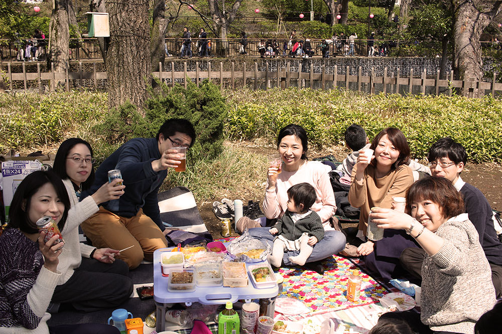A typical Hanami with friends, in many cases children come with parents to Hanami since they are babies.
