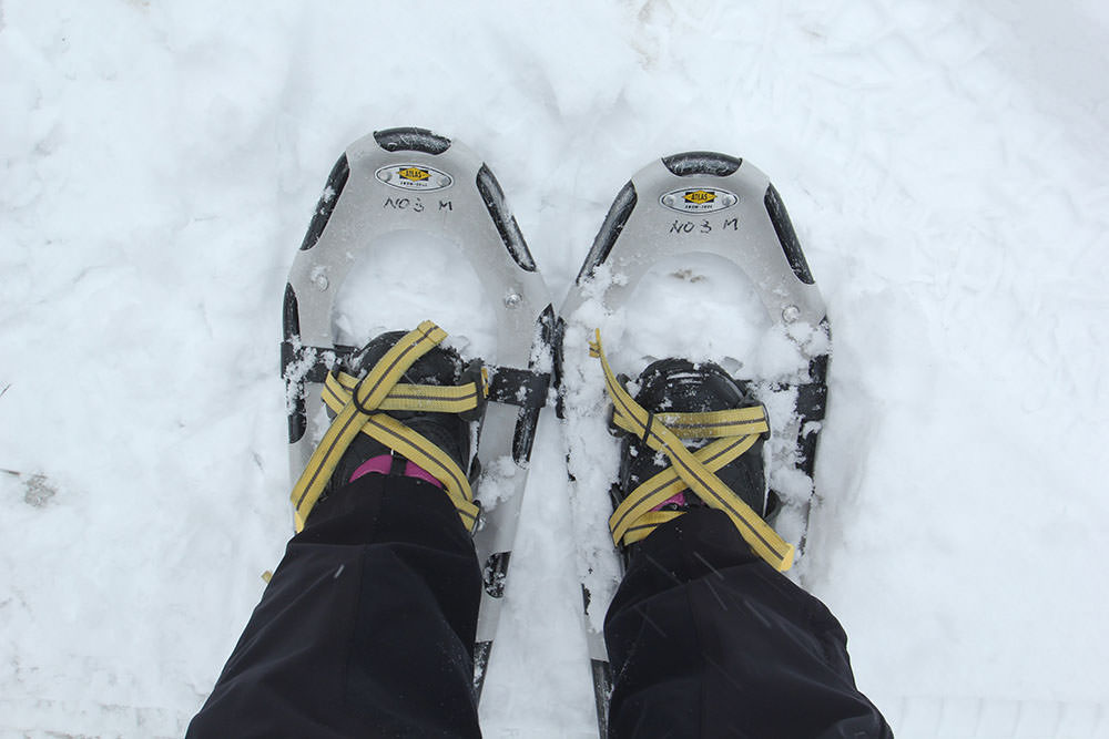 Put on snowshoes and let's go hiking!