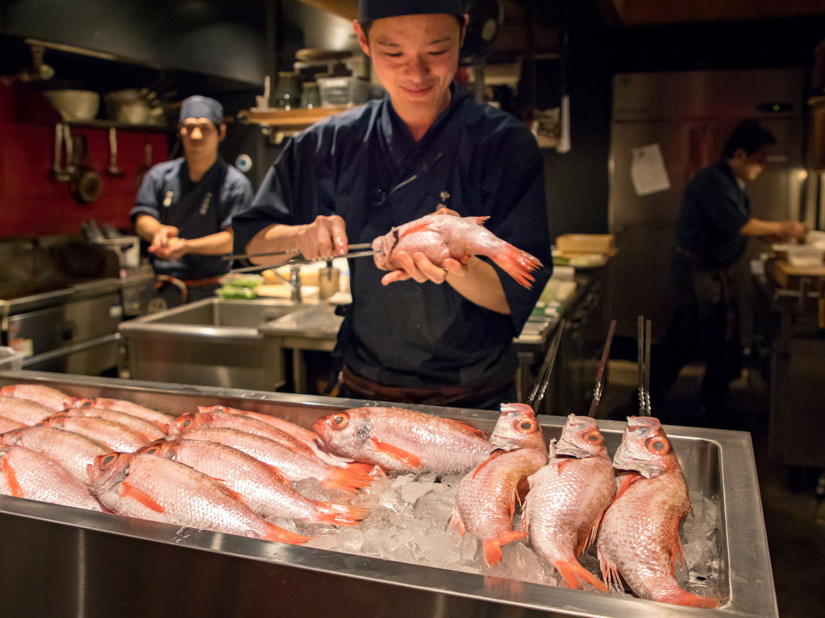 Nakamata Shuzo's staff preparing Nodoguro
