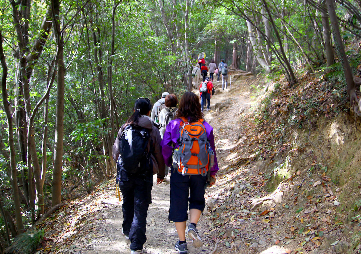 Many people in Tokyo enjoy hiking on weekends
